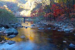 Autumn Mountain with lake photo