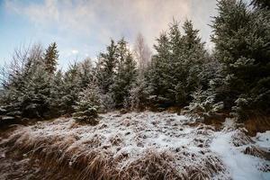 Fantástico paisaje de invierno. dramático cielo nublado.