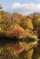 estanque de hojas de otoño en japón