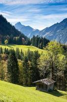 Wooden cabin on a green meadow