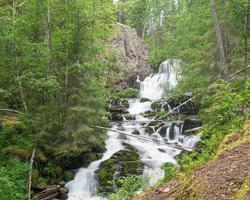 Wild waterfall Myantyukoski. Paanajärvi National Park photo