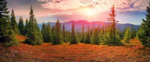 alpine autumn in Gorgany photo