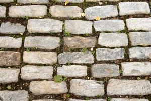 Brick Sidewalk photo