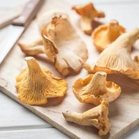 Raw chanterelles with knife