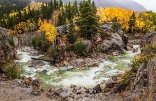 fall color in Colorado mountain