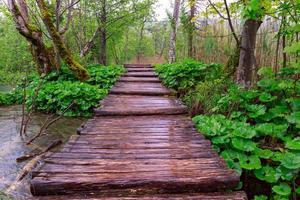 promenade in het park plitvicemeren