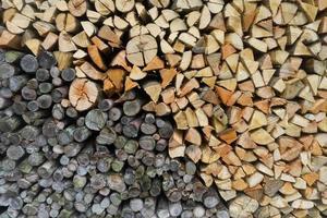 Wood logs background photo