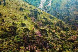 encostas da montanha