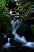 Arroyo de montaña foto