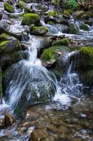Mountain stream. photo