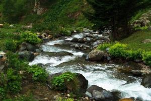 Arroyo de montaña