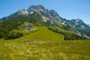 Mountain Maglic