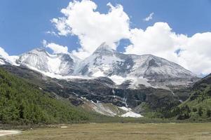 Tibet snow mountain with Grassland photo