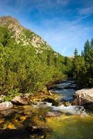 Mountain river in High Tatras