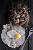 Quail eggs in the nest and a fried egg photo