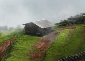 Misty mountain hut. Rains