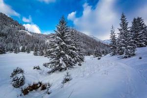 camino de nieve en el valle de la montaña