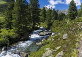 Dolomitas de Lienz - Austria foto