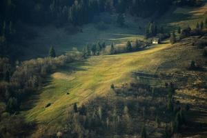 Spring hillsides photo