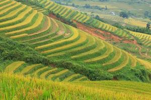 Rice terraces in the mountains photo