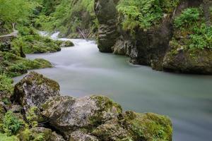 Beautiful mountain river. Flowing water.
