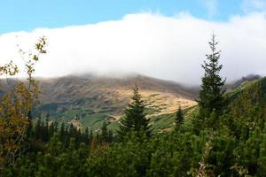 Autum in Tatra photo
