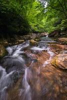 Blue Ridge Mountain Stream 8 photo