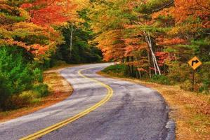 sinuoso camino de otoño foto
