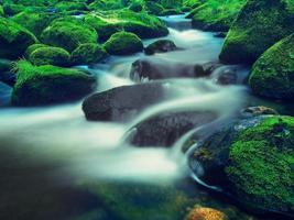 Big boulders in foamy water of mountain river.