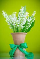 lilies of the valley photo