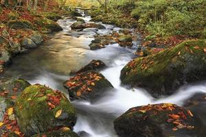 Mountain river in late Autumn photo