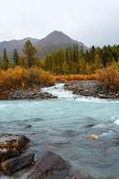 mountain river with the wood photo