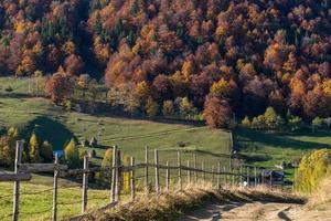 árvores de outono em colinas de montanha