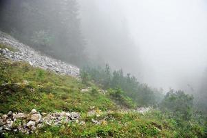 niebla en un valle de montaña foto
