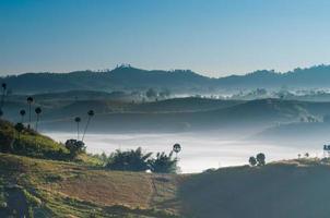 morning fog on the mountain