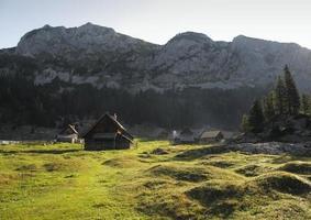 mountain meadow Planina V Lazu