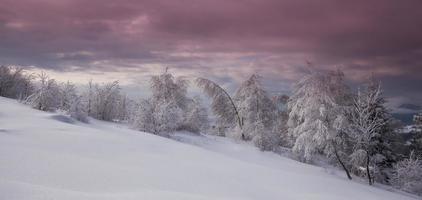 winterlandschap in de bergen