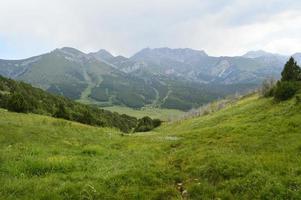 Mountain landscape, Sheveli gorge, Kyrgyzstan photo