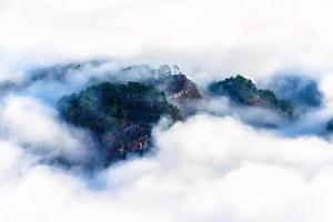 Plantación de té brumoso en la montaña