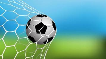 Realistic soccer or football in net with vector