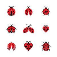 Ladybug icon set vector