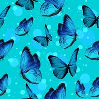 Turquise butterflies and blue bubbles pattern vector