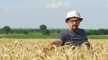contadino sul campo che controlla il raccolto