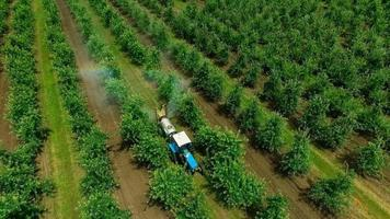 Aerial view of the Sprayer for Applying Fungicides in the Apple Orchard . Slow Motion