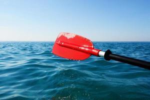 paddle red in ocean