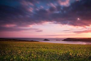 Idyllic wild flowers meadow on Cornish cliff at dramatic sunrise
