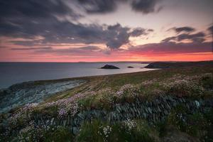 Dramatic sunrise over cliffs with wild flowers in Cornwall