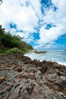 rotsachtige kust, noordkust van Oahu, Hawaï