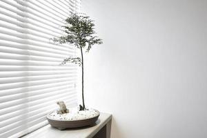 zen planten naast het raam