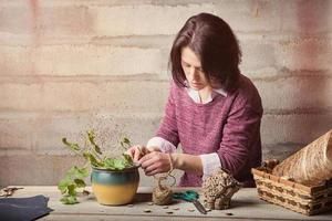 Woman is handcrafting a house plant
